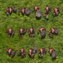 Goblin Warrior (Caverna Tribe)