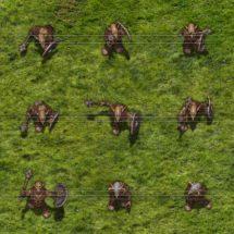 Feral Goblin Warrior