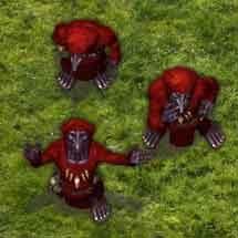 Nächtlich Goblin Cultist