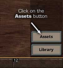 Click on the Assets Button to open the Assets Panel